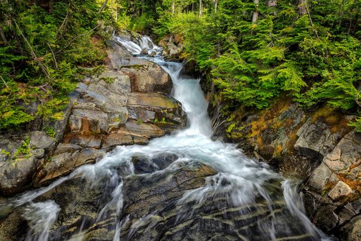 River, waterfall, forest, trees, nature