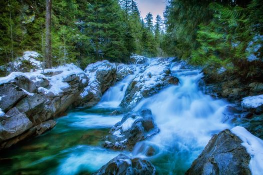forest, trees, River, waterfall, stones, nature