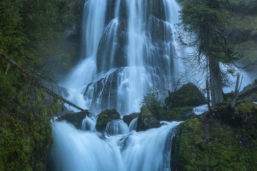 Oregon, Creek Falls, trees, rock, waterfall, landscape