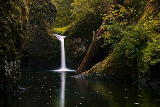 Upper Punchbowl Falls, Columbia River Gorge, waterfall, forest, trees, nature