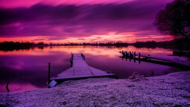 Фиолетовые сны (16:9)