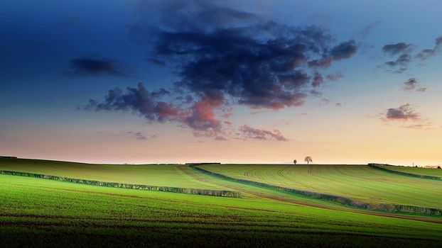 sunset, field, hills, trees, sky, clouds, landscape