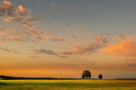 field, sky, clouds, landscape, sunset