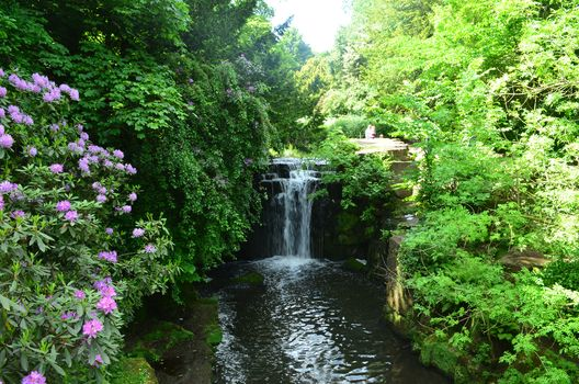 waterfall, Jesmond Dene Park, Newcastle upon Tyne, England, bushes, Newcastle, Jesmond Dene Waterfall, forest, England, Jesmond Dene public park, landscape