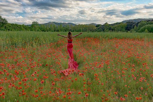field, flowers, maki, trees, girl, landscape