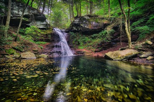 Ricketts Glen State Park, Pennsylvania, Ricketts Glen State Park, waterfall, rock, trees, nature