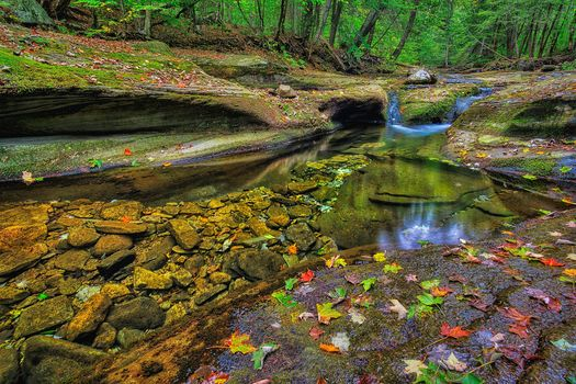 Ricketts Glen State Park, Pennsylvania, Ricketts Glen State Park, forest, rock, small river, trees, nature.free, Creek, nature