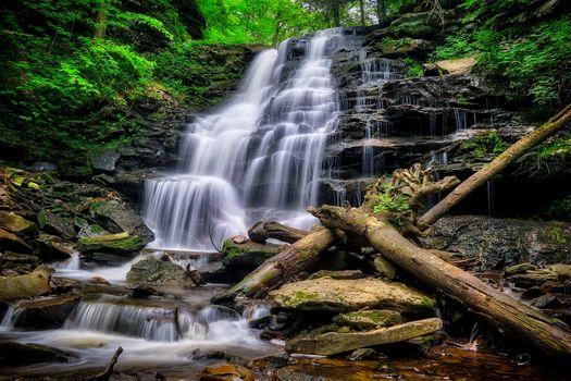 Государственный парк Рикеттс Глен, Пенсильвания, Государственный парк Рикеттс Глен, водопад, скалы, деревья, природа