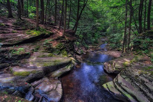 Ricketts Glen State Park, Pennsylvania, Ricketts Glen State Park, forest, rock, small river, trees, nature