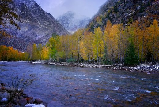 China, Xinjiang, Altai region, the mountains, autumn, River, trees, landscape