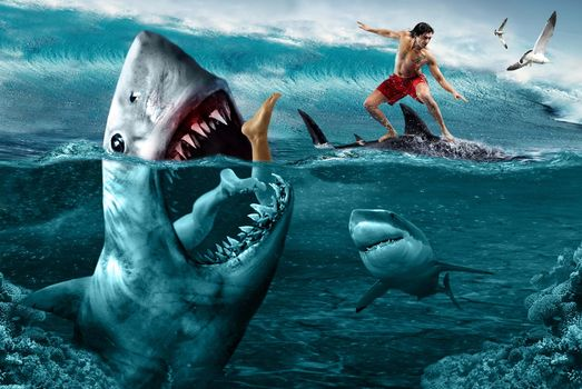 sea, Windsurfing, Sharks, dangers, guy, attack of sharks, art