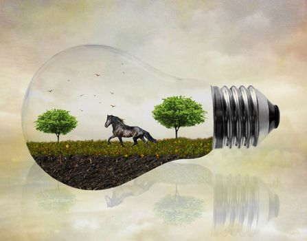 bulb, field, horse, trees, art