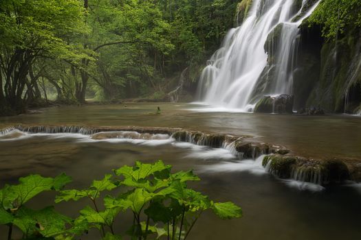 waterfall, water, trees, rock, nature