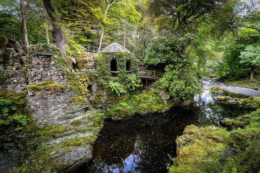 Tallimore Forest Park, Northern Ireland