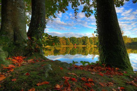 France.the lake, autumn, trees, landscape