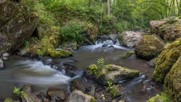 forest, trees, stones, waterfall, small river, Creek, nature