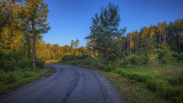 Moscow region, Russia, Moscow region, road, sunset, forest, trees, landscape