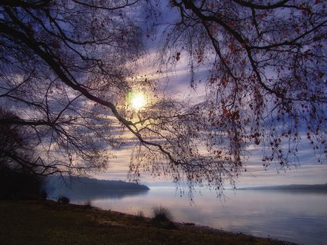 Starnberg Lake, Germany, Bayern, sunset, trees, fog, landscape