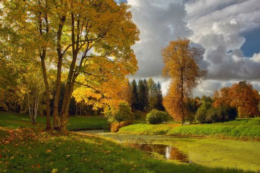 In Autumn in Pavlovsk, water, park, pond, trees, sky, landscape, colors of autumn