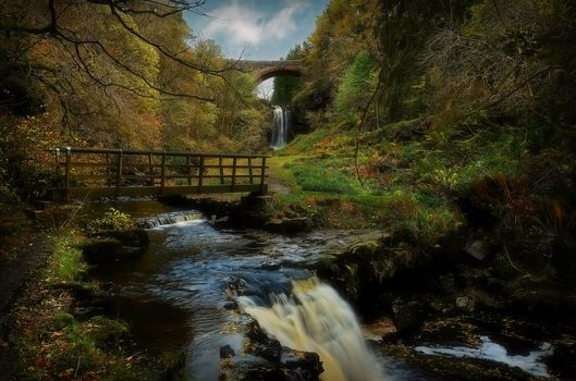 River, forest, trees, nature, waterfall, bridge, landscape