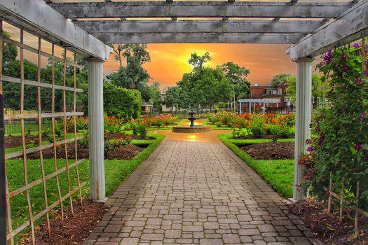 Ontario, Canada, Montebello Park, Rose Garden, sunset, landscape
