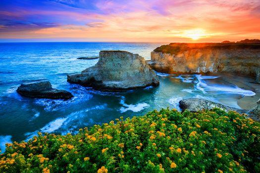 sunset, sea, rock, Coast, flowers, waves, landscape