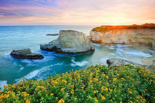 sunset, sea, rock, Coast, waves, flowers, landscape
