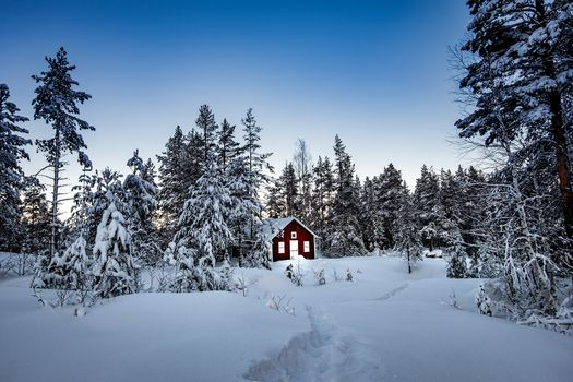 winter, snow, snowdrifts, forest, trees, lodge, landscape
