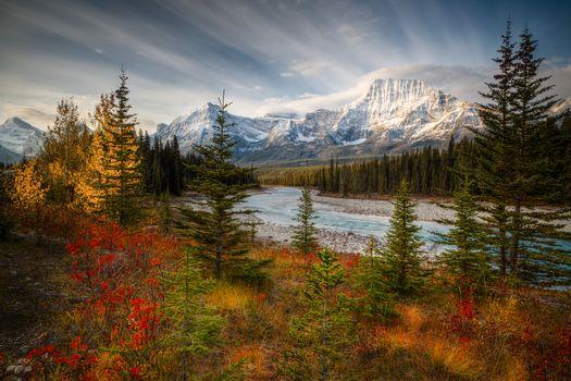 Национальный парк Джаспер, Канада, осень, река, горы, деревья, пейзаж