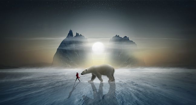 sunset, winter, North Pole, polar bear, girl, rock, art