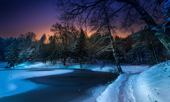 winter, sunset, lake, snow, forest, trees, path, landscape