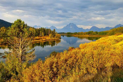 Национальный парк Гранд-Титон, Вайоминг, горы, река, деревья, пейзаж