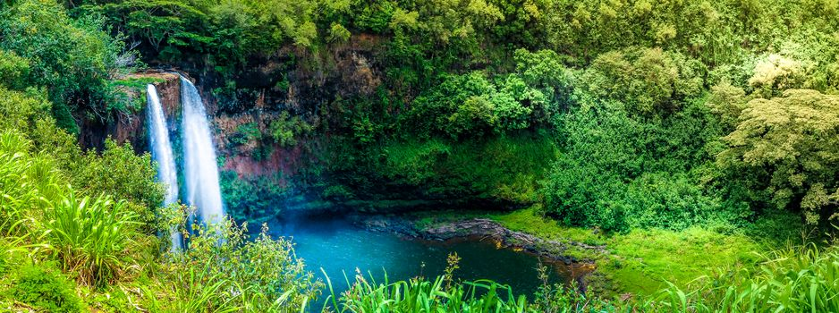 River, waterfall, forest, trees, landscape, view, Kauai, Hawaii