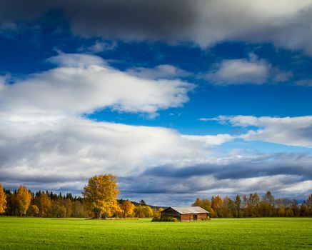 autumn, field, house, trees, sky, clouds, landscape
