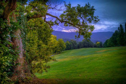 закат, поле, горы, холмы, деревья, пейзаж