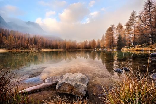 autumn, lake, the mountains, trees, landscape