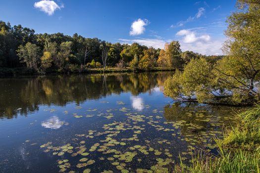 Arkhangelskoye, Krasnogorsk district, Moscow region, Russia, autumn, River, trees, landscape