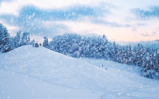 winter, snow, hills, slide, trees, landscape