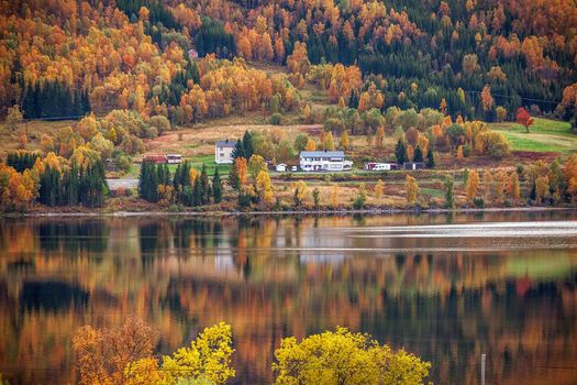 Norway, autumn, River, hills, at home, trees, landscape