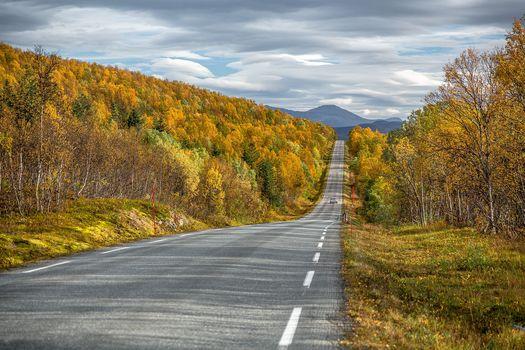 сумерки, Норвегия, осень, дорога, горы, деревья, пейзаж