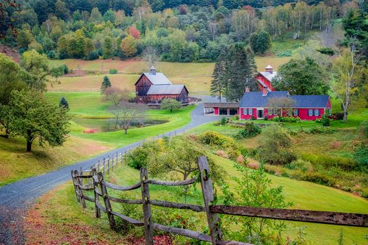 autumn, Vermont, hills, at home, road, trees, landscape