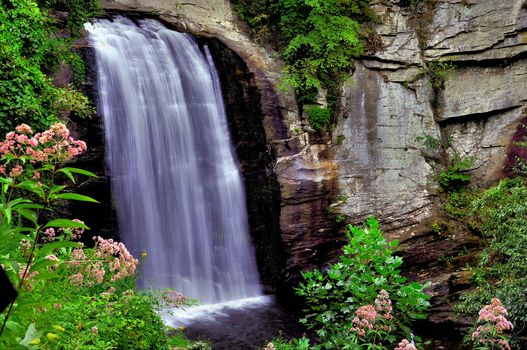 waterfall, rock, flowers, landscape