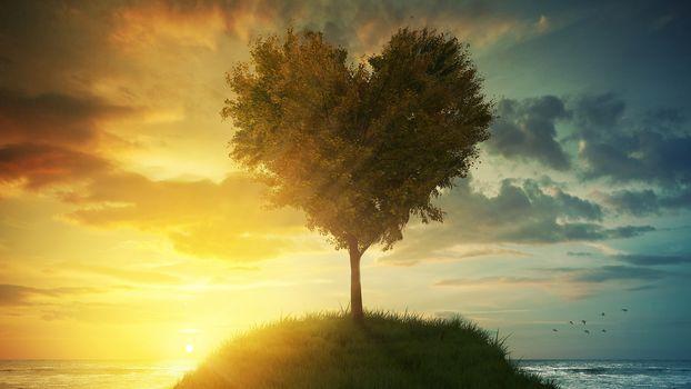 Древо любви ( 4К, 24 шт)