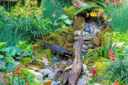 красивый сад 2