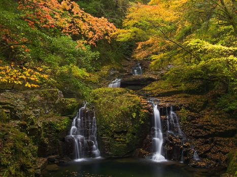 autumn, forest, trees, waterfall, landscape
