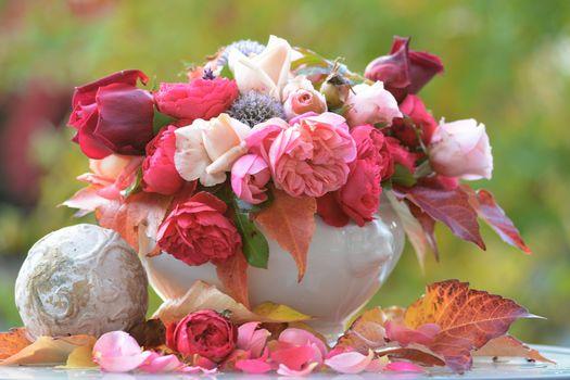 нежные розы 16