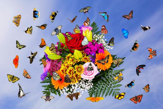 букет и бабочки