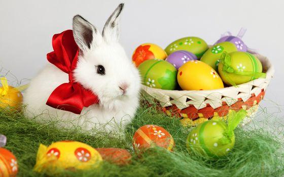 Пасхальный кролик - 2 (UHD, 30 шт)