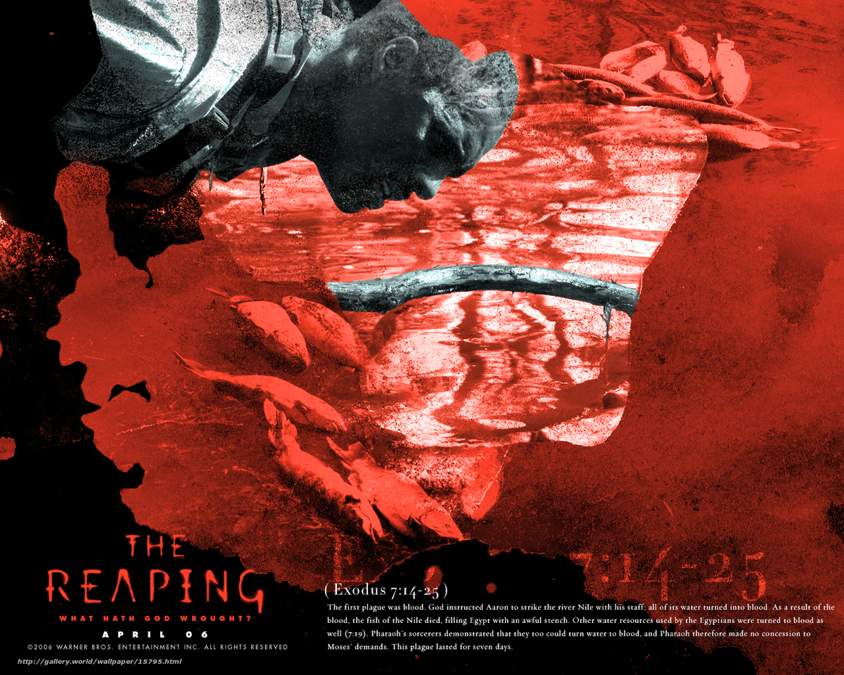 The reaping movie