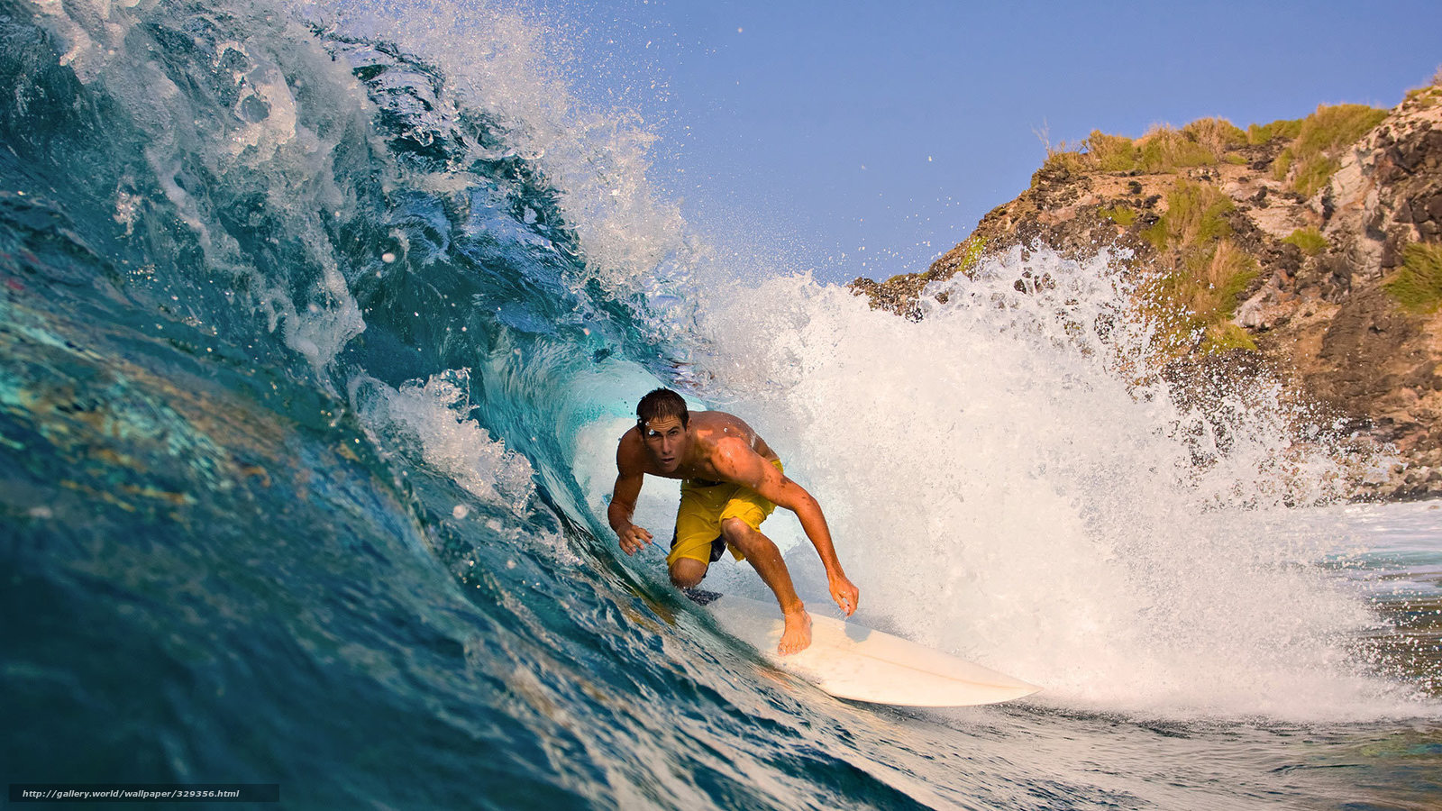 Surfer sitzbezug